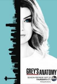 Greys Anatomy Season 06